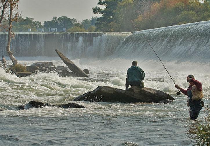 Image gallery oswego river fishing for Oswego fishing report