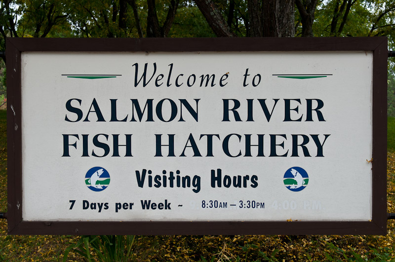 Oswego County Today >> Open House, the Salmon River Fish Hatchery, 2010