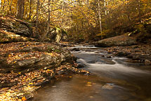 Fall Colors, Rickets Glen State Park, Pennsylvania